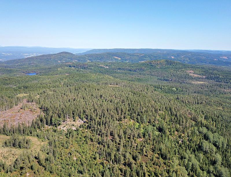 16-Utsikt mot Dypningskollen fra Snaukollen (drone)