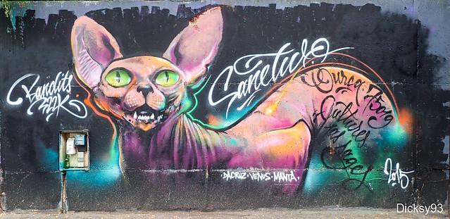 DA CRUZ . VENUS . MANTA - Street-art