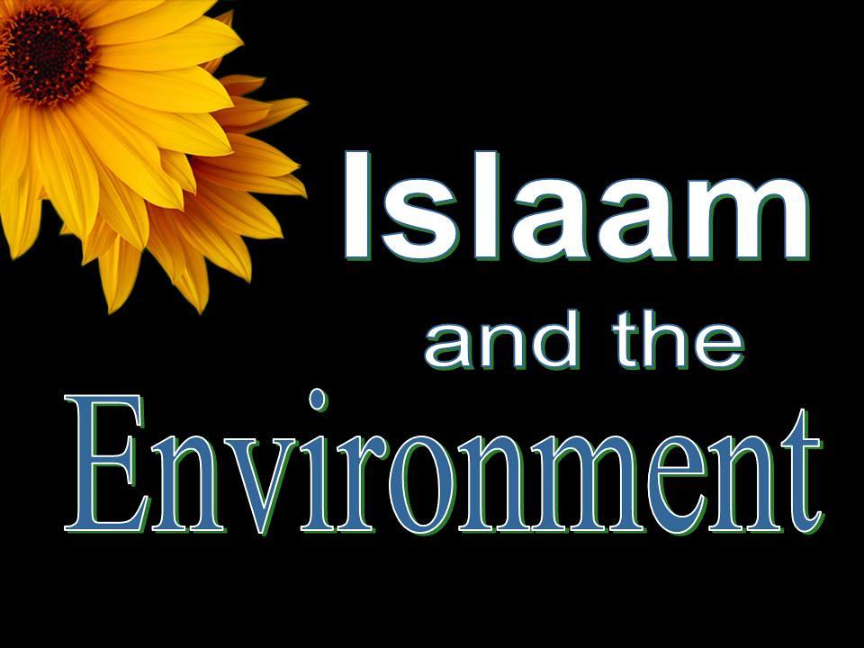 Islamische Religion