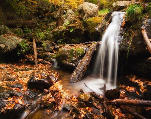 park longexposure autumn mountain fall water colors leaves creek virginia waterfall falls shenandoah skylinedrive darkhollowfalls