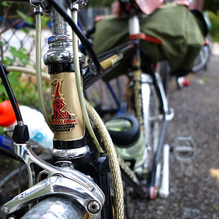 Raleigh Pursuit on the DC Brew Cycle Ride | by Mr.TinDC