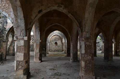 Great Mosque of Kilwa Kisiwani, 11th - 18th cents (15) | by Prof. Mortel