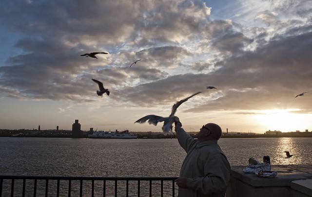 Feeding Seagulls in Liverpool