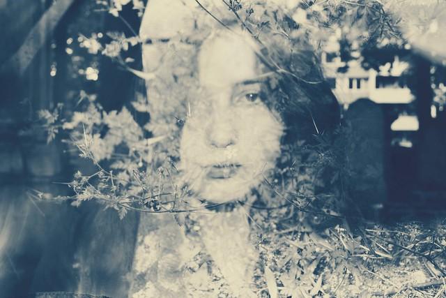 Portrait ( surimpression ) .
