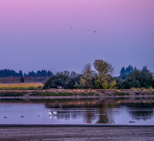 oregon evening unitedstates forestgrove d800 fernhillwetlands nikkor80400mm uscopyrightregistered2012