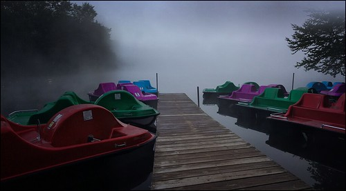 landscape waterscape latesummer earlymorning fog trees paddleboats lake dock foggymorning lowclouds cloudcover stilllife glassywater inkywater reflections woodendock mistymorning gray red green purple blue brown stillwater oldforge lakeserene adirondacks newyork usa travel cellphone phonephoto iphone iphone5s iphoneography phoneography nature earthnature iphonenature naturelovers statepark 100x2016 100xthe2016edition image72100 grayclouds graysky grayfog 365