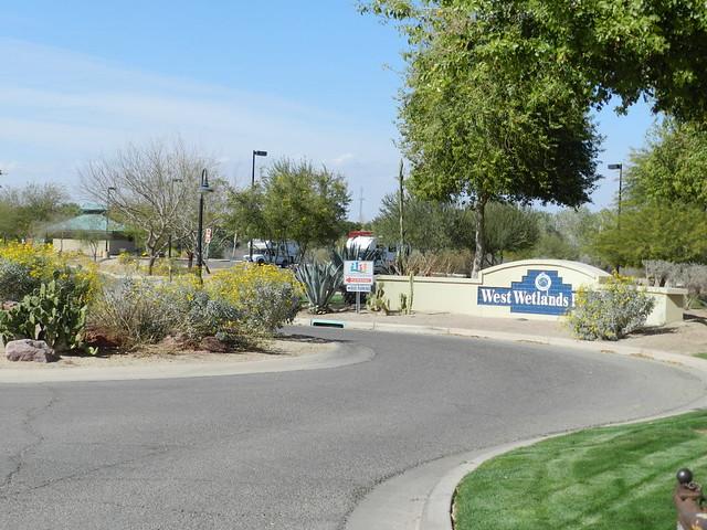 Yuma GC, Arbor Day, Yuma, Arizona