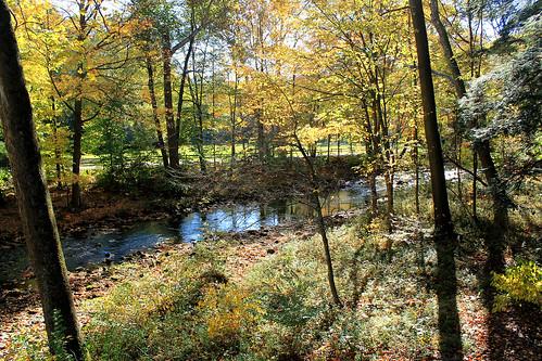 bridge autumn stream fallfoliage suspensionbridge millcreek youngstown historicsite millcreekpark mahoningvalley mahoningcounty valleydr millcreekmetropark