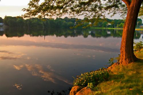 summer tree reflections massachusetts wakefield sunrisesunset lakequannapowitt