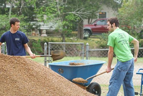 Big Event Volunteers Scooping Mulch