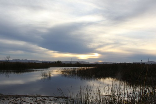 sunset northerncalifornia wetlands suisuncity solanocounty suisunmarsh lawlerranch