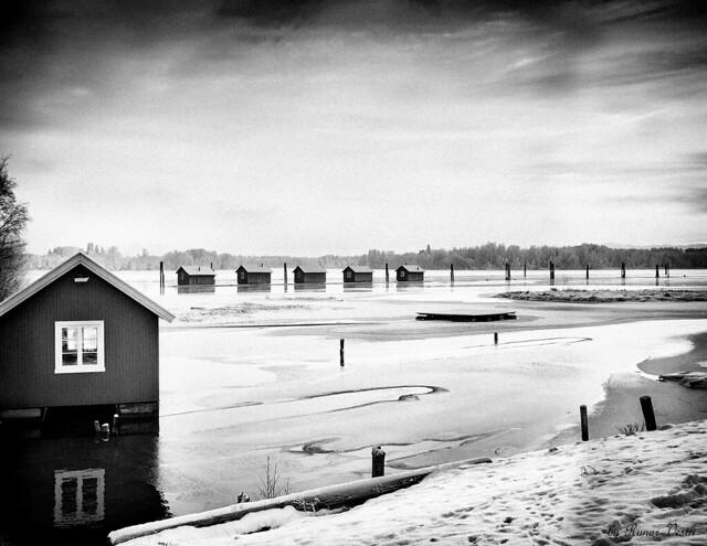 Monochrome winter scene...