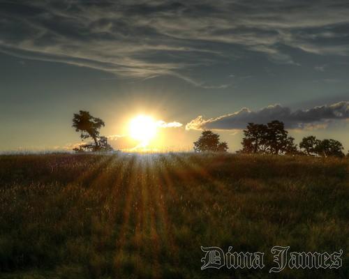 park sunset ny james day state cloudy 100v10f historic dima caumsett lloydharbor caumsettstatehistoricpark lloydharborny