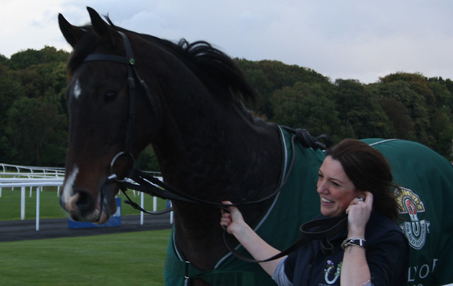 Comply or Die @ Chepstow - 13-10-12
