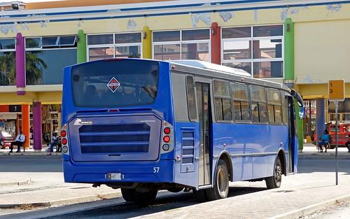 bus aruba international oranjestad arubus