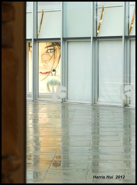Reflection On Beauty - Aberdeen X1379e