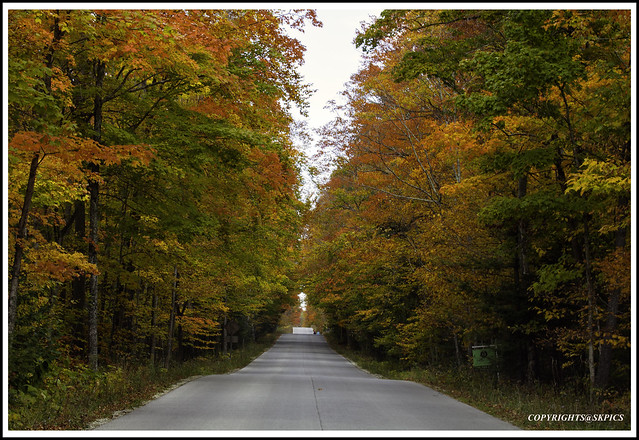 On my way to Sturgeon Bay - Door County Wisconsin . Beautiful Fall colors.