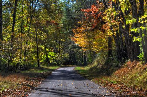 autumn wv westvirginia hdr countryroad tuckercounty prestoncounty subtlehdr dogrunroad notthejohndenversong
