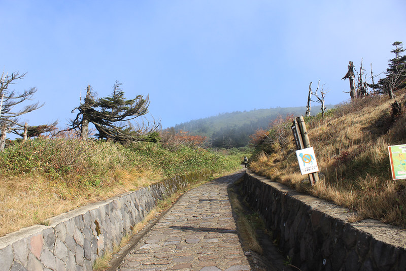 20121014_八幡平_0013