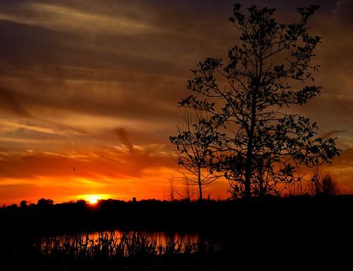 autumn sunset orange reflection weather nikon october 1855mmlens d5100 sunsetoverapond
