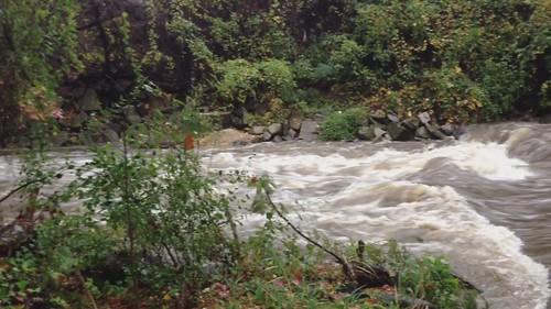 Hurricane Sandy - Four Mile Run creek and flooded trail
