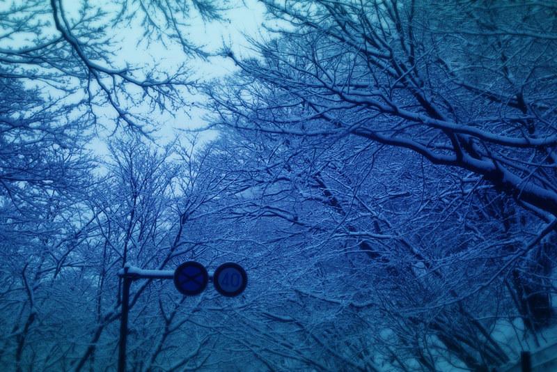 社山_09