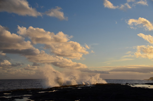 Puna coast (DSC_4236)