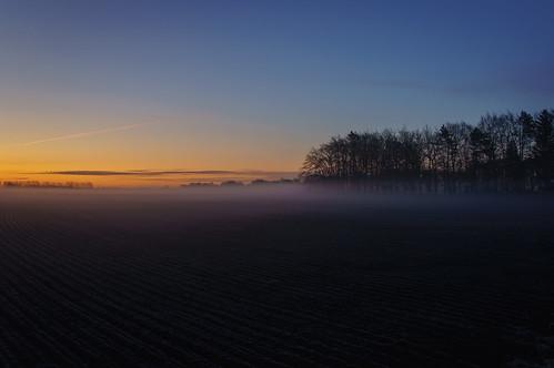 trees mist field fog night sunrise sony nex