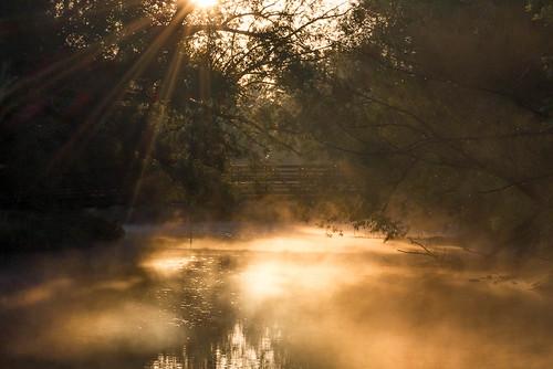 bridge usa nature fog sunrise canon river landscape colorado unitedstates natural foggy scenic fortcollins poudre legacypark t2i canont2i