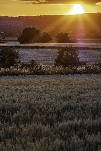 sun sunset light beams wheat oats farm crops rays fuji fujifilm 50230mm lightroom not hdr landscape