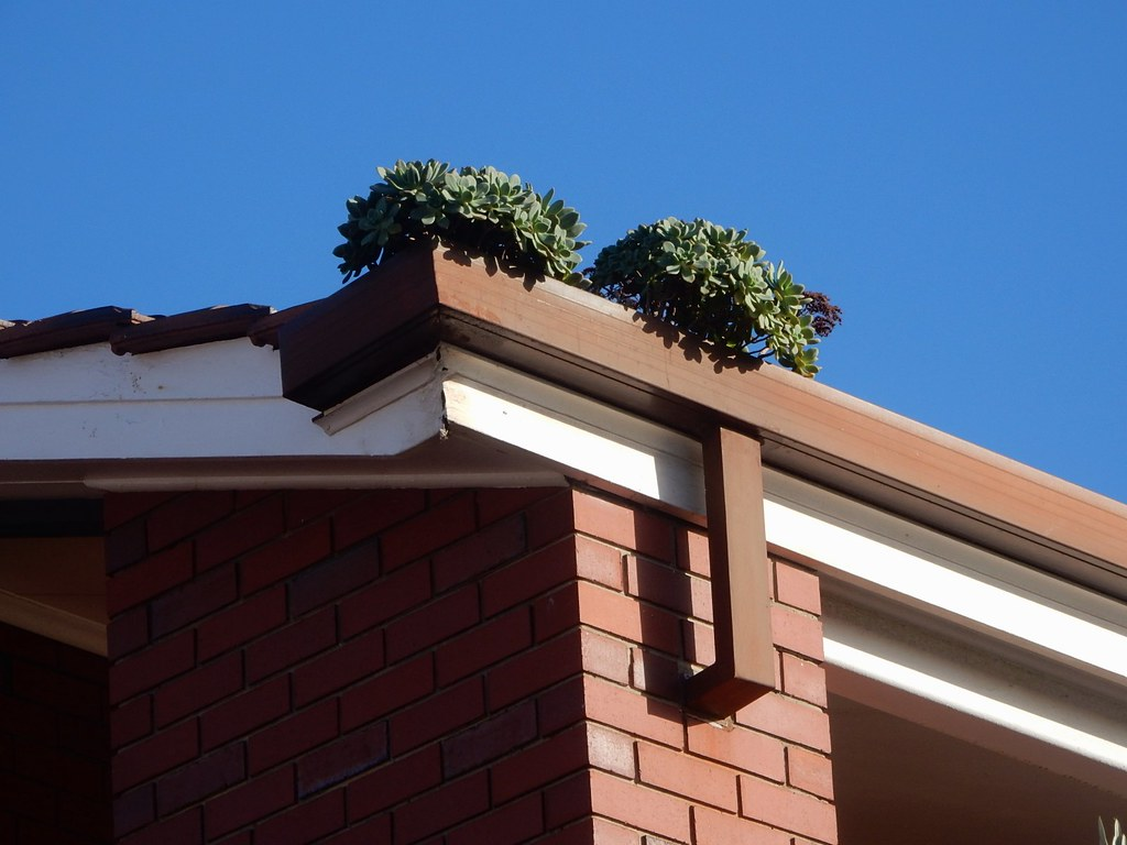 How To Replace Roof Trim