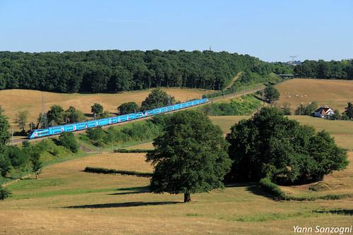 train chemin de fer tgv duplex ouigo 700 um lgv pse paris sud est le breuil saôneetloire vaches champs bourgogne sncf