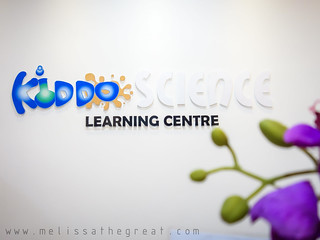 DSC06017