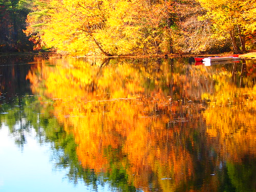 ri autumn wallpaper color fall yellow reflections colorful olympus rhodeisland bej flickraward panasonic45200 flickraward5 epm1