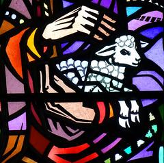 St Joseph's lamb