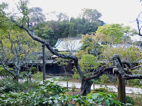 2012/11/03 (土) - 14:47 - 東慶寺
