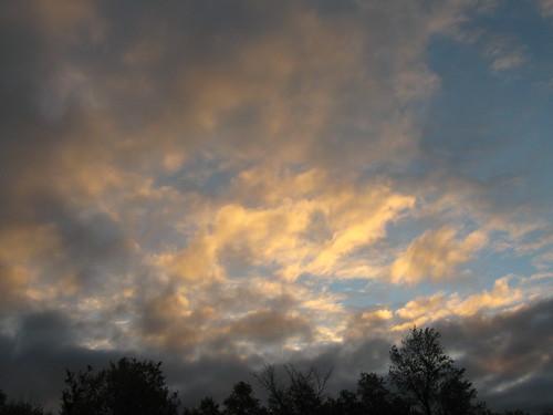 trees sky clouds sunrise landscape kansas mothernature fortriley