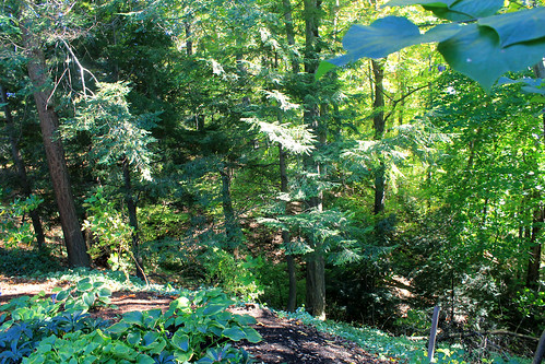 garden millcreek youngstown millcreekpark mahoningvalley mahoningcounty fellowsriversidegarden millcreekmetropark