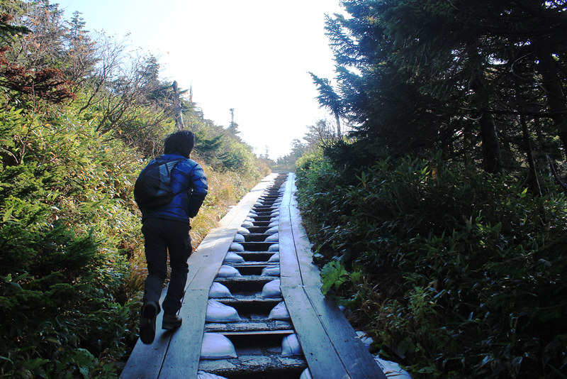20121014_八幡平_0014