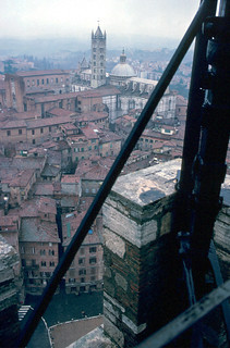 View from the tower of the Palazzo Publico