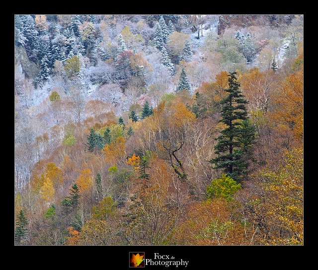 Sounkyo Autumn Mountains II