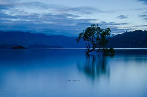 longexposure newzealand reflection water lakes wanaka singletree lakewanaka lonetree nationalgeographic twop longexposures 10stop leefilter leebigstopper