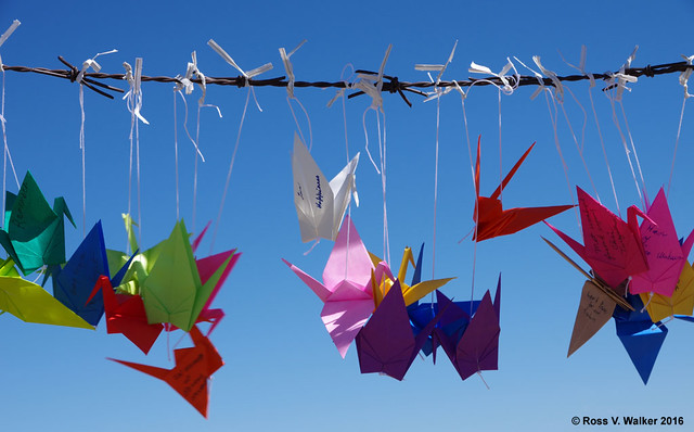 Peace Cranes on Barbed Wire