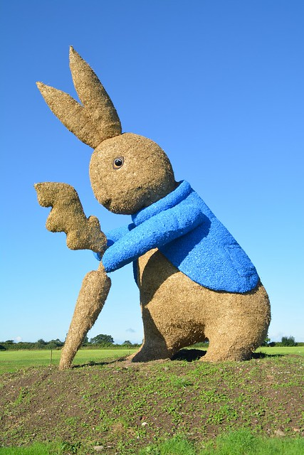 Snugburys Peter Rabbit