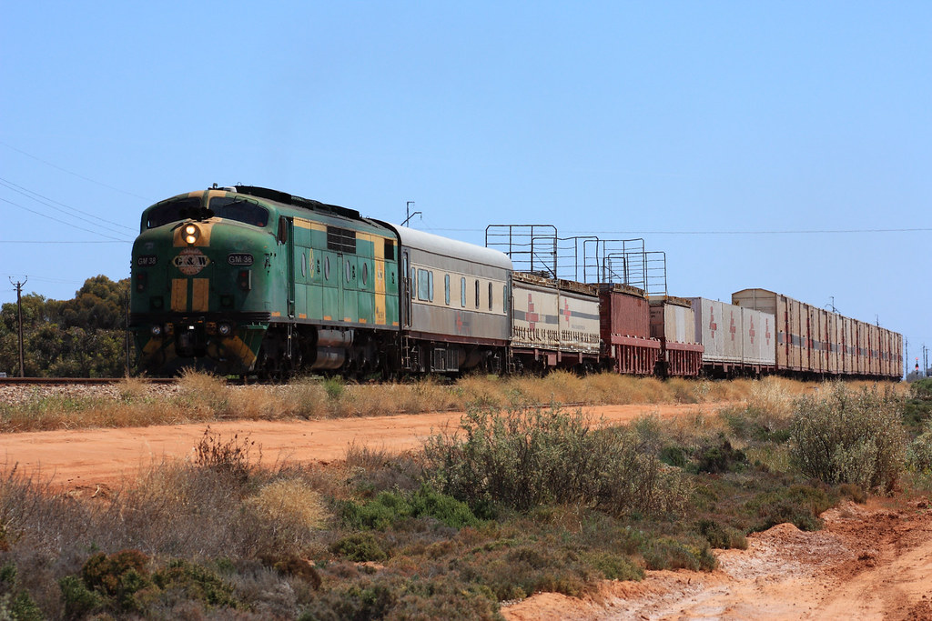 GM 38 Coonamia by Malleeroute