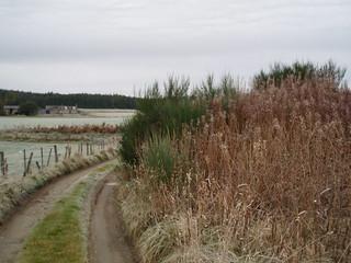 P34 Kiln location at Tillyhermack