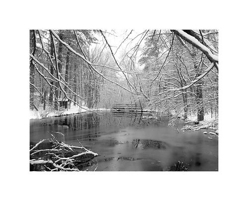 flickr foto photo image capture picture photography canon bw water white winter storm snow flurries bridge cold dark ice frozen love bleak beauty beautiful landscape trees forest outside outdoors nature massachusetts canonpowershotg11 blackandwhite natureporn naturelover naturephotography snowstorm winterflurries pinetrees plainvillemassachusetts newengland