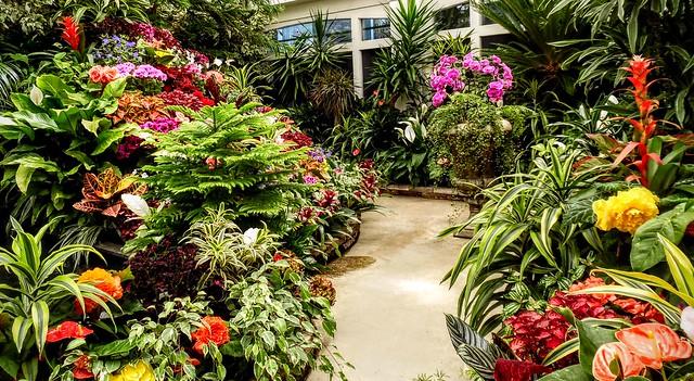 Floral Display - Butchart Gardens, Victoria, British Columbia, Canada