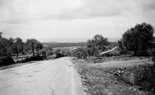 2-9 Oct 1942 - Looking towards outskirts of Tripoli (Syria)