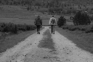 The Long Road   by Kyrre Gjerstad